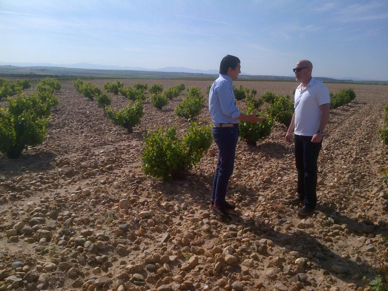 MICHAEL SCHACHNER HAS VISITED THE RUEDA APELLATION