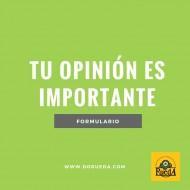 """OPINIÓN SOBRE EL PLIEGO CONDICIONES DE LA D.O.P. """"RUEDA"""""""